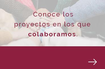 La Fundación Manuel Peláez Castillo canaliza la obra social de Ecisa